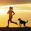 Up to 45% Off Dog-Friendly Run