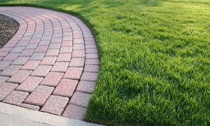 Maitre Vert: Lawn Aeration and Fertilization from Maître Vert (Up to 78% Off)