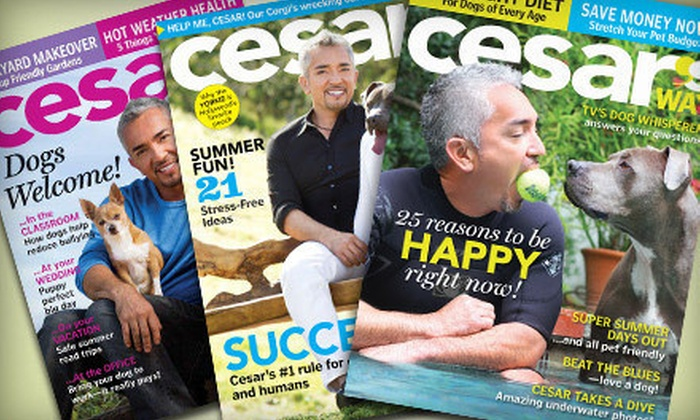 "Blue Dolphin Magazines: One- or Two-Year Subscription to ""Cesar's Way"" from Blue Dolphin Magazines (Up to 51% Off)"