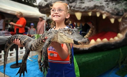 Gator Adventure Productions - Gator Adventure Productions in Orlando