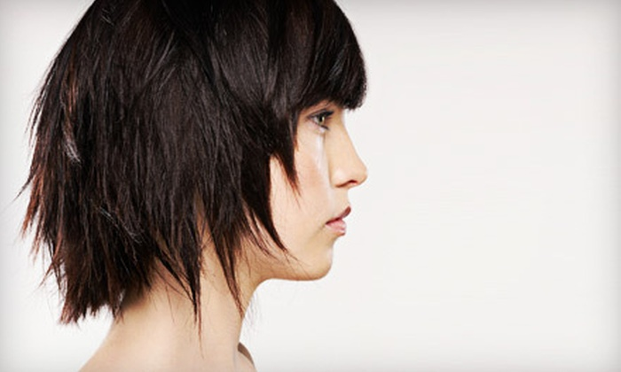 Filiz Hair Design - River Hill: Men's or Women's Haircut Packages at Filiz Hair Design in Clarksville (Up to 75% Off). Four Options Available.