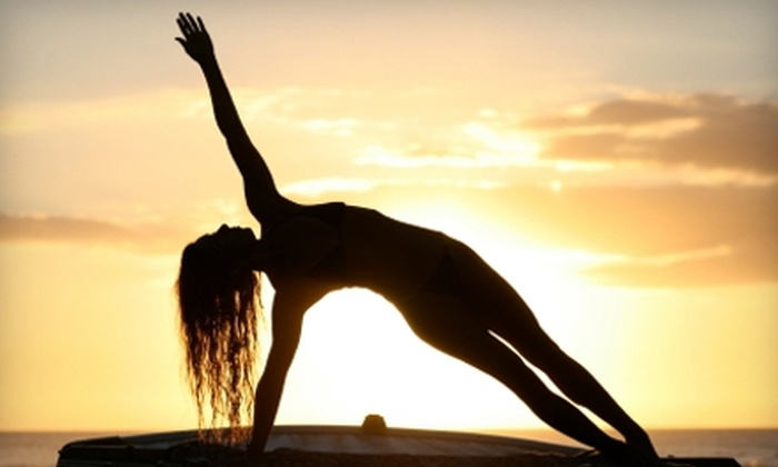 Shiva Shanti Yoga School - Rutherford: $25 for 30 Days of Unlimited Classes at Shiva Shanti Yoga School in Rutherford ($108 Value)