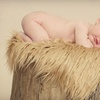 93% Off Photo Package in Collierville