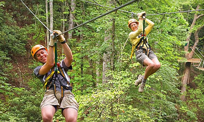 Wildwater Zipline Canopy Tours - Multiple Locations: 3.5-Hour Zipline Canopy Adventure for One or Four from Wildwater Zipline Canopy Tours