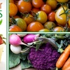 Half Off Delivered Organic Produce