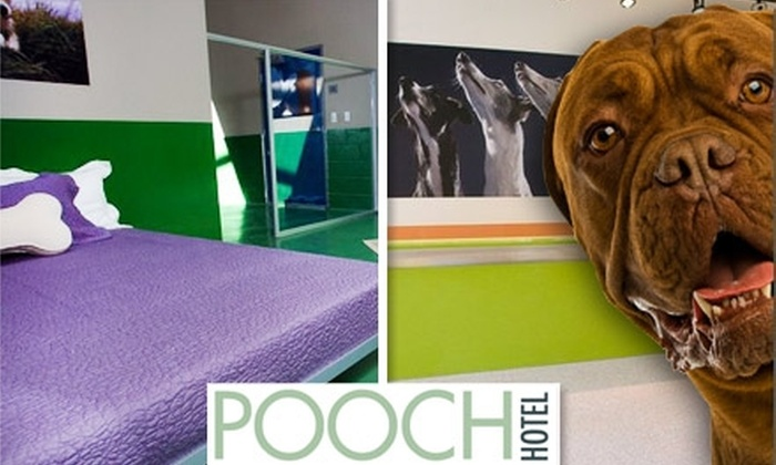 Pooch Hotel - Sunnyvale: $50 for $150 Worth of Boarding & Services at the Pooch Hotel