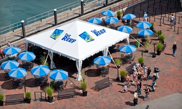 The Reef at the New England Aquarium - Boston: $10 for $20 Worth of American Fare at The Reef on the New England Aquarium Plaza