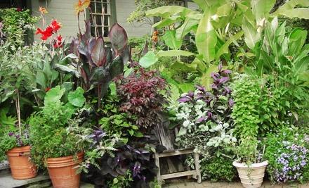 The Scott Arboretum: Scott Associates' Plant Sale on Saturday, September 17 from 10AM1PM - The Scott Arboretum in Swarthmore