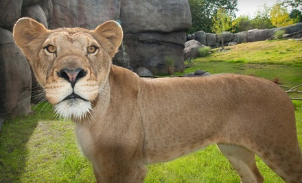 Zoo Outing for 2 Adults (up to a $26.50 total value) - Oregon Zoo in Portland
