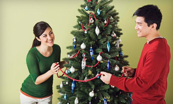 Garden World - Multiple Locations: $12 for $25 Worth of Trees and Holiday Decorations at Garden World