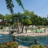 44% Off Mini Golf for Four at Pirate's Quest