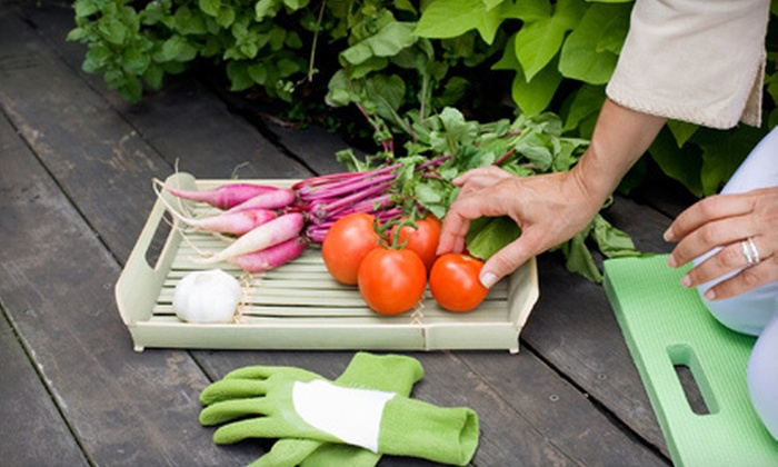 Garden Inspirations - Multiple Locations: Six-Week Vegetable-Gardening Class for One, Two, or Four at Garden Inspirations (Up to 68% Off)