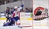 Norfolk Admirals - Downtown Norfolk: $10 for One Gold-Level Ticket to the Norfolk Admirals on April 7, 9, or 10 ($19 Value)