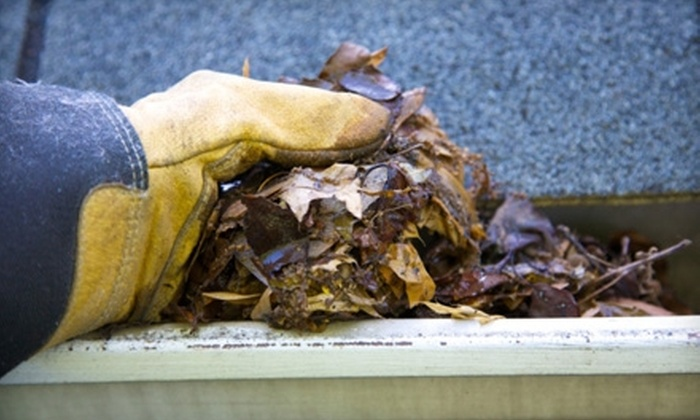 The Gutter Brothers - Village Green-Green Ridge: $85 for Gutter Cleaning from The Gutter Brothers ($175 Value)