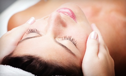 1-Hour Mane Facial (a $55 value) - The Mane Attraction Salon & Spa in Batavia