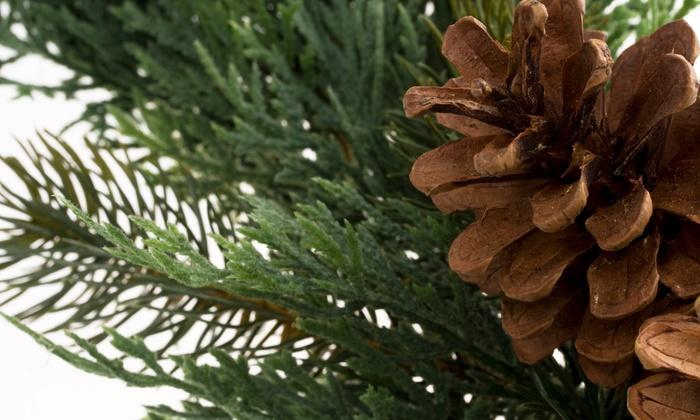 Mark's Tree Farm - Colchester: $29 for a Balsam Wreath and $10 Off a Fraser Fir Pre-Cut Christmas Tree at Mark's Tree Farm ($55 Value)