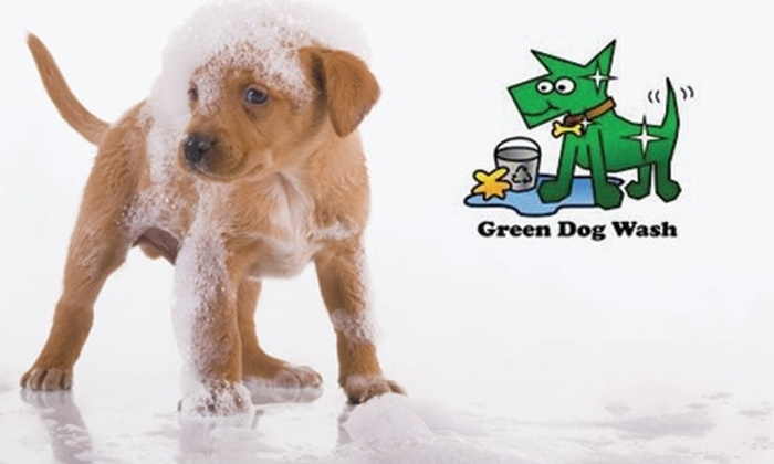 Green Dog Wash - Goss - Grove: $29 for Three Self-Service Dog Washes and Three Professional Nail Trimmings at Green Dog Wash in Boulder ($75 Value)