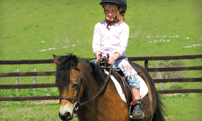 Strides Riding Academy - Petaluma: One, Three, or Six One-Hour, Private Riding Lessons at Strides Riding Academy in Penngrove (Up to 52% Off)