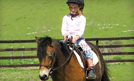 One 1-Hour Private Riding Lesson (a $55 value) - Strides Riding Academy in Penngrove