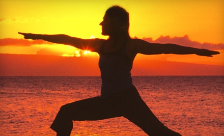 The Yoga Space: Good for 1 Month of Unlimited Yoga Classes (an $80 value) - The Yoga Space in Berea
