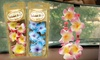 Bahama & Co Auto Necklace Air Freshener 4-Pack: Bahama & Co Auto Necklace Air Freshener 4-Pack. Free Returns.