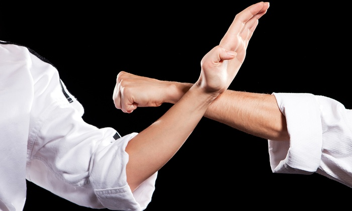 Bruce H. Lee Martial Arts School - Glendale Heights: One or Two Months of Classes at Bruce H. Lee Martial Arts School (Up to 75% Off)