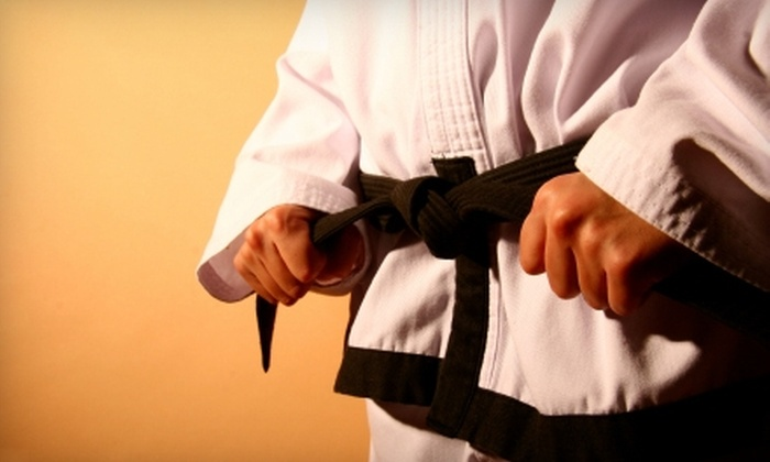 USA Karate - Multiple Locations: $19 for a Karate Uniform and One Month of Lessons at USA Karate ($50 Value)