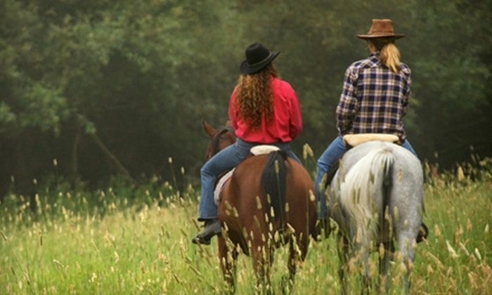 Rocking M Ranch - Garden City: $40 for Two Trail Rides at Rocking M Ranch ($80 Value)