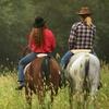 Half Off Trail Rides at Rocking M Ranch