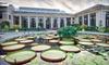 Longwood Gardens - Kennett Square: $9 for One-Day Admission to Longwood Gardens in Kennett Square (Up to $18 Value)