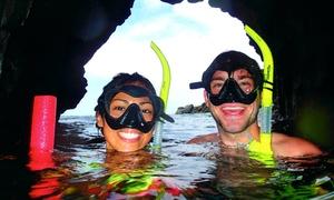 Shoreline Snorkel: Up to 40% Off Snorkeling Tour at Shoreline Snorkel