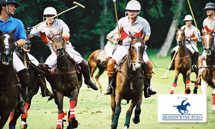 Brandywine Polo Club - New Garden: $49 for One VIP Ticket to England vs. USA Polo Championship Game at Brandywine Polo Club on Sept. 19 in Toughkenamon ($100 Value)