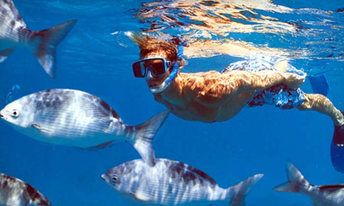 Looe Key Reef Resort and Dive Center - Ramrod Key: $84 for a Full-Day Diving Trip for Two from Looe Key Reef Resort and Dive Center ($168 Value)