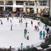 Half Off Skating at Americas Ice Garden