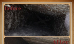 Pure Air-Service: Up to 75% Off Air-Duct & Furnace Cleaning at Pure Air-Service