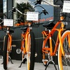 Half Off Electric-Bike Rental from Revolution E