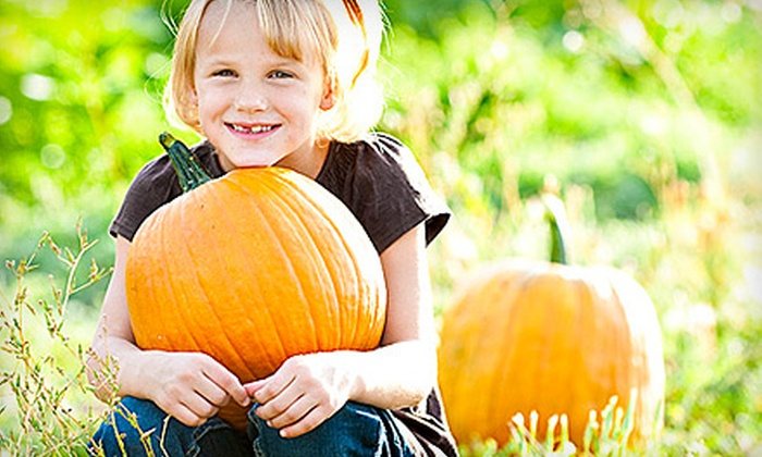 Hee Haw Farms - Lindon: $20 for Fall Outing with Halloween Activities and Pumpkins for Two at Hee Haw Farms in Pleasant Grove (Up to $40 Value)