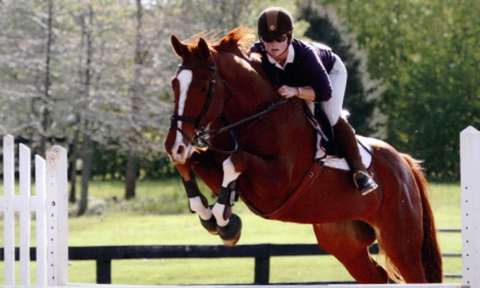 Punchestown Stable - Independence Wells: $22 for a 45-Minute Private Riding Lesson at Punchestown Stables ($45 Value)
