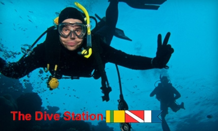 The Dive Station - College Park: $24 for a Two-Hour Discover-Scuba Class at The Dive Station ($50 Value)
