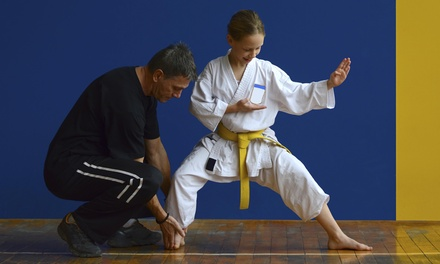 15 Karate Classes at National Karate & Tae Kwon Do (54% Off)