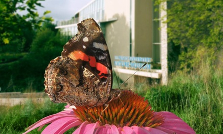 Admission for 2 or 4, or One- or Two-Year Family Membership to Peggy Notebaert Nature Museum (Up to 50% Off)