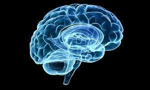Natural Balance Wellness Medical Center: $115 for a 2-Hour Brainwave Optimization Assessment at Natural Balance Wellness Medical Center ($230 Value)