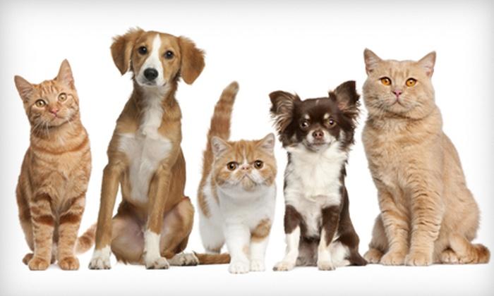 Monroe Family Pet Hospital - Monroe: $19 for a Wellness Exam for Dog or Cat at Monroe Family Pet Hospital ($38.35 Value)