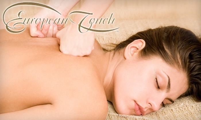 European Touch Salon & Day Spa - South Loop: $45 for $100 Worth of Services at European Touch Salon & Day Spa