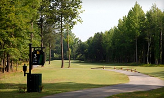 The Georgia Trail - Duluth: $122 for Three One-Hour Golf Lessons and 18 Holes with Cart at The Georgia Trail in Duluth ($305 Value)