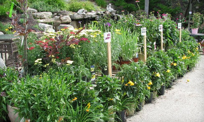 Wolf Hill Home and Garden Center - Multiple Locations: $15 for $30 Worth of Plants, Garden Accents, and Landscaping Supplies at Wolf Hill Home and Garden Center