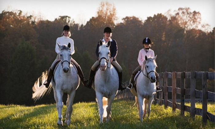 Grandview Equestrian Center - Wichita: Two or Four Horseback-Riding Lessons or Two Months of Boarding at Grandview Equestrian Center (Up to 51% Off)