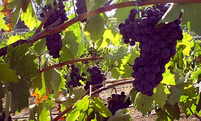 Fernwood Cellars - Llagas-Uvas: $20 for One Bottle of Wine and a Tasting for Two at Fernwood Cellars in Gilroy (Up to $45 Value)