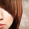 Half Off Haircare at Tina Cimino Studio