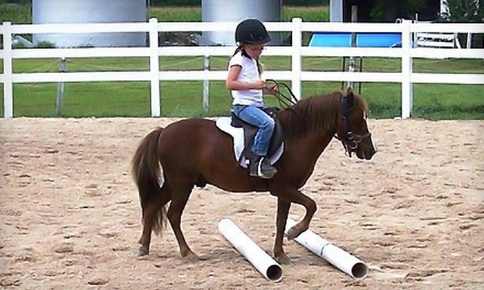 Johnson Horse Riding School - Pacific: Two Private Riding Lessons or Birthday Party for Up to Five Kids at Johnson Horse Riding School in High Ridge (51% Off)